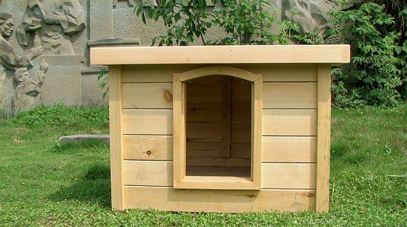 哈多利生态狗屋原创设计制造室内系列Hi04
