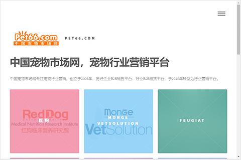 中国宠物市场网主页展示效果