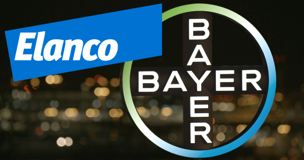 bayer-elanco-600x315.png