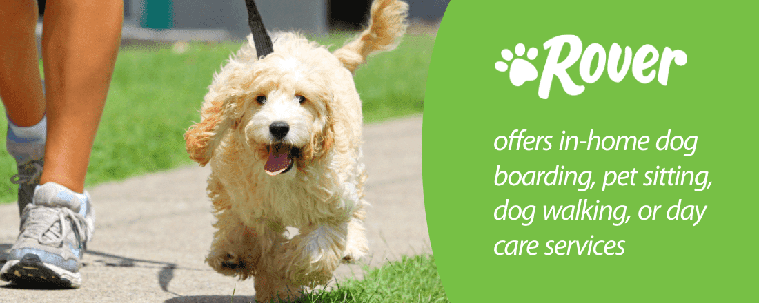 Rover-offers-in-home-dog-boarding-pet-sitting-dog-walking-or-day-care-services.png