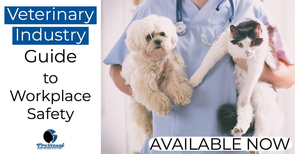 vet_safety_guide.jpg