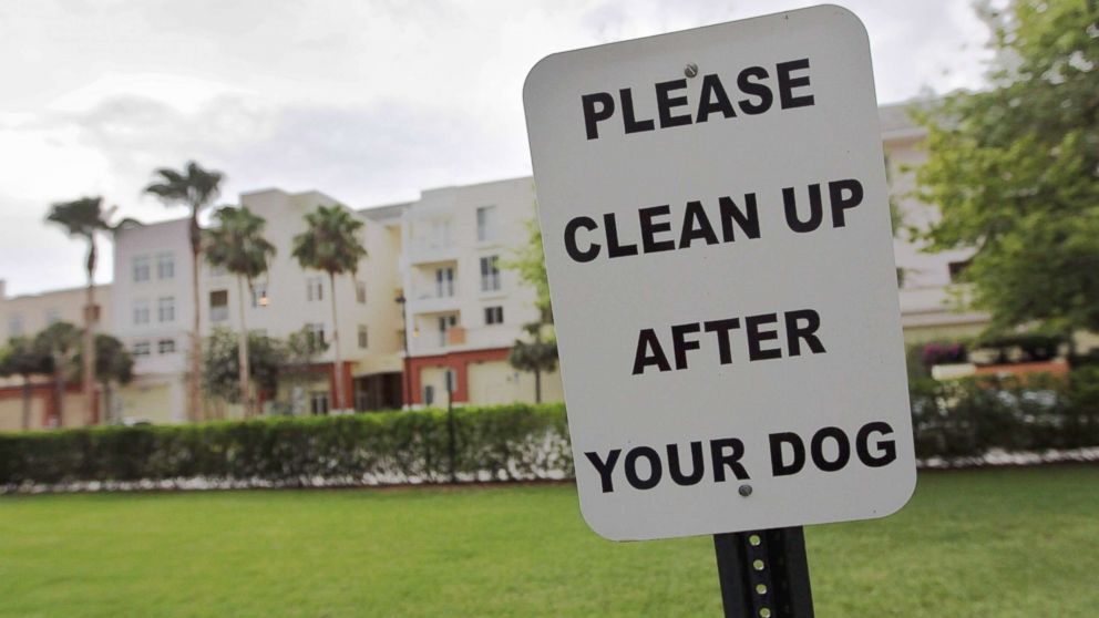 clean-up-after-dog.jpg