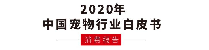 2020report.PNG